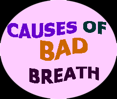 Dental Pro 7 Causes Of Bad Breath